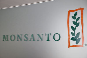 Bayer-Monsanto: approbation imminente